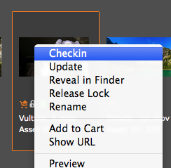 Checkin via Contextual-menu